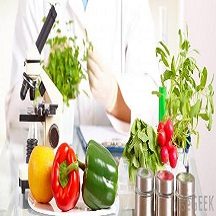 مهندسی شیمی گرایش صنایع غذایی